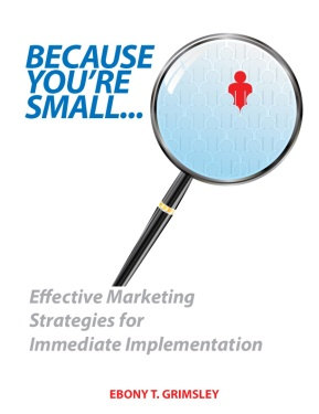 Because You're Small: Effective Marketing Strategies for Immediate Implementation. 2012