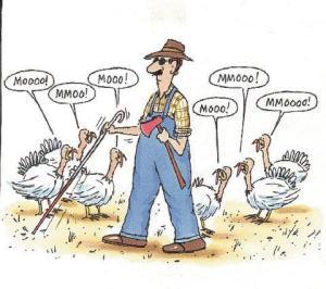 Blind Farmer