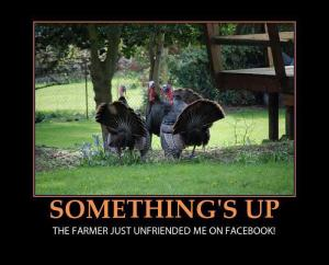 Something's Up. Turkey Unfriended.