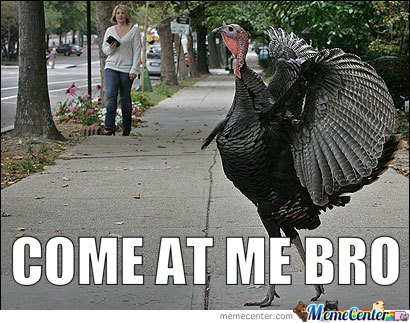 Thanksgiving Meme, Come At Me Bro, Image Courtesy of Mustapan/Meme Center.